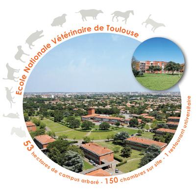 Photo du Formation scolaire Diplôme d'Etat de Docteur vétérinaire