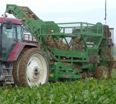 Photo du Récolte des betteraves TE7 Cargo