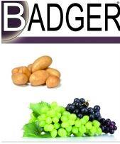 Photo du Fongicides cultures industrielles Badger