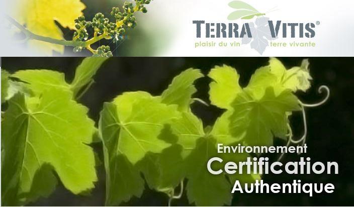 Photo du Associations professionnelles Passion de la vigne et du vin