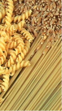 Photo du variétés blé d'hiver Chistera