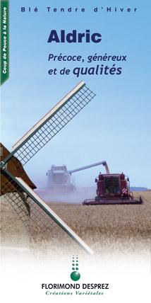 Photo du variétés blé d'hiver Aldric