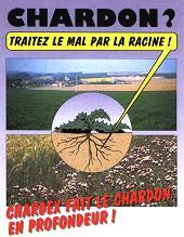 Photo du Herbicides céréales Chardex