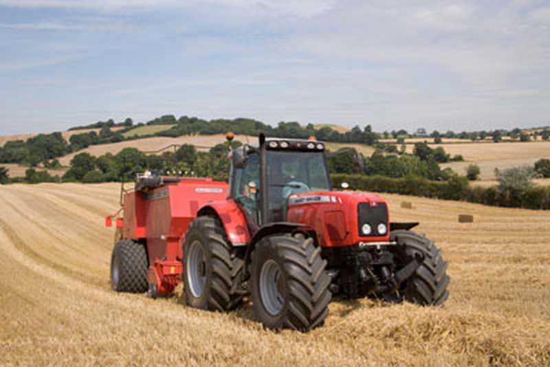 Photo du Tracteurs agricoles MF 6499