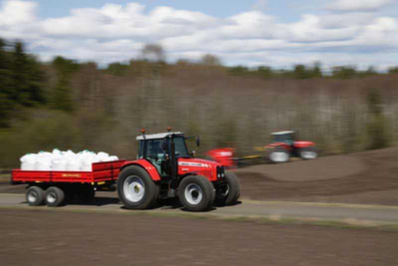Photo du Tracteurs agricoles MF 6475