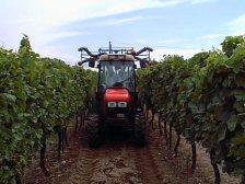 Photo du Tracteurs vignerons Golden 65