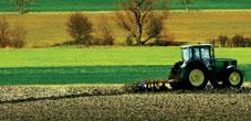 Photo du Coopératives de commercialisation des céréales Collecte de céréales, produits viticoles, agrofournitures