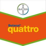 Photo du Herbicides cultures industrielles Betanal Quattro
