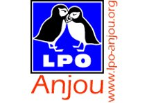 Photo du Associations civiles LPO Anjou