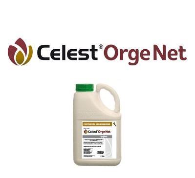 Photo du Traitement des semences de céréales Celest Orge Net