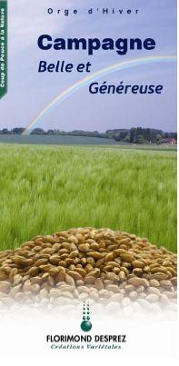Photo du variétés d'orge d'hiver 6 rangs Campagne
