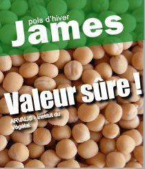 Photo du variétés de pois d'hiver James