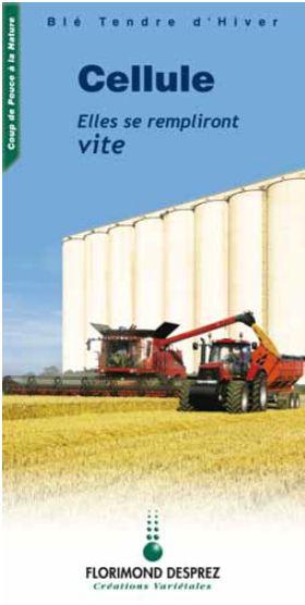 Photo du variétés blé d'hiver Cellule